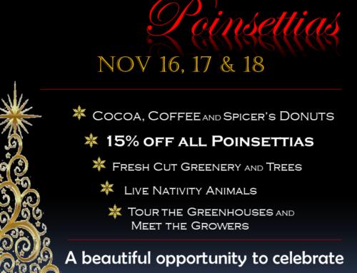 Parade of Poinsettias Nov 16-18 2017